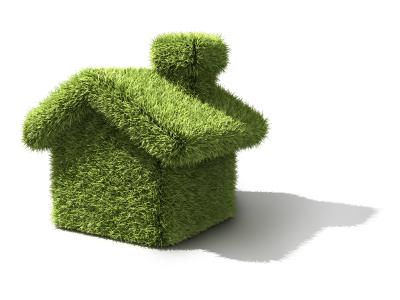 Green Construction Jobchange CSCS